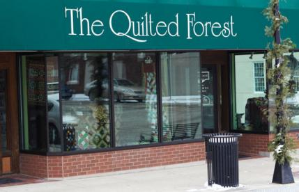 The Quilted Forest | AllPeopleQuilt.com : the quilted forest - Adamdwight.com